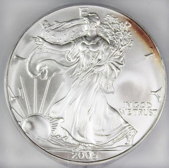 2005 AMERICAN SILVER EAGLE