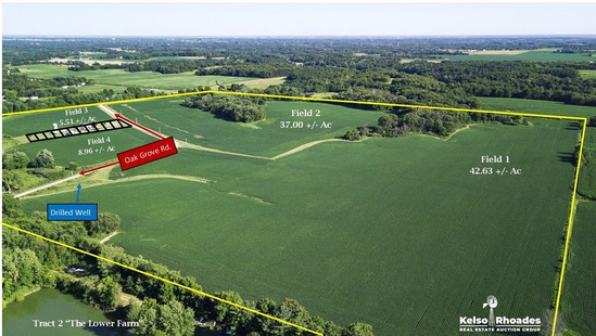 Tract 2:  The Lower Farm - 114.86 +/- Acres
