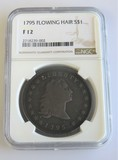 1795 Flowing Hair Half Dollar NGC Fine Details
