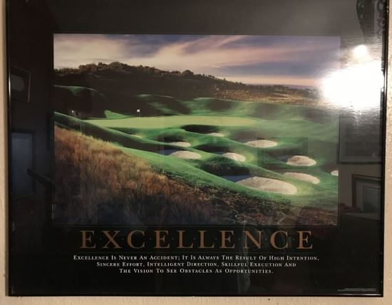 "Successories ""Excellence"" Framed Picture"