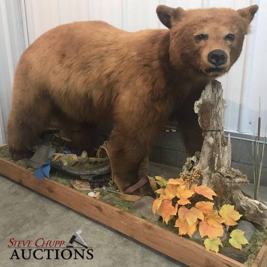 6th Annual Taxidermy & Antler Auction