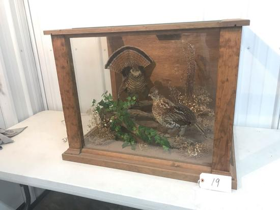 2 Rough Grouse in glass case