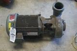 Dayton motor