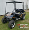 Harley Golf Cart