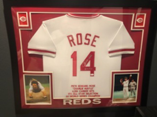 Rose Jersey