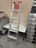 6 ft Aluminum step ladder