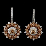 14K White Gold 1.10ctw Fancy Color Diamond Earring