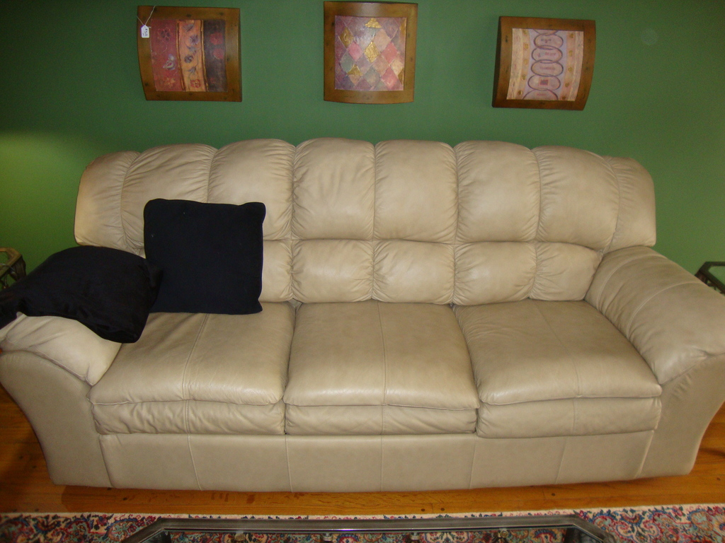 Leather Sofa/Sleeper (has tear on backside)