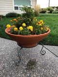 Ceramic Planter 23