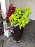 Ceramic Planter 18