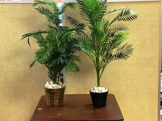Artificial Plants and Plant Stands