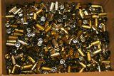 .40 Caliber Brass