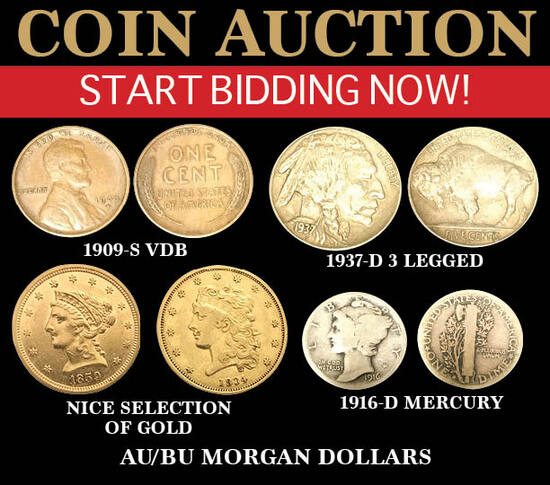 Large Timed Online Only Coin Auction