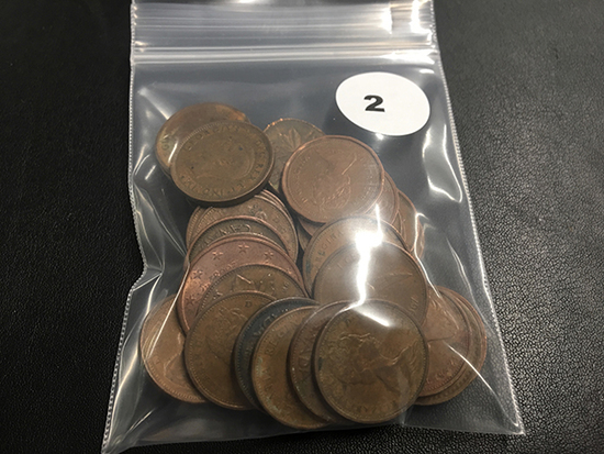 Bag of 36 Canadian pennies