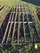 14ft Pipe Gate (Consigned by Garry Graham 660-341-4797)