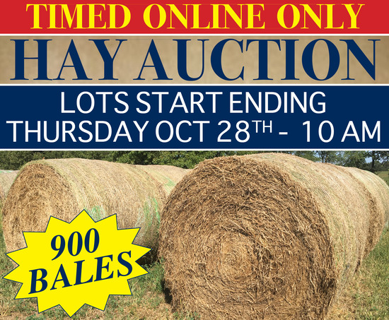 Timed Online Only Hay Auction