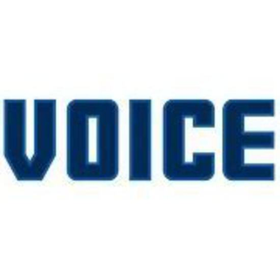 DAY 2- Voice Construction Group Auction