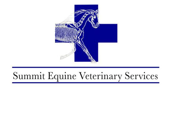 Summit Equine Veterinary Services Auction