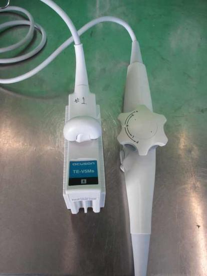 Siemans TE-V5Ms Transducer