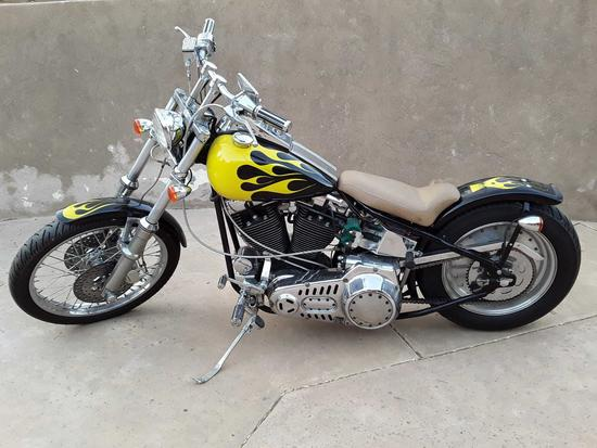 Harley-Davidson Custom chopper named the Beast custom paint job