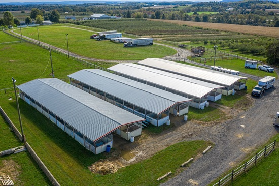 30'x 100' 12 Stall (10'x10' Fry Bros. Portable Stalls), W/Roof Structure, Center Isle