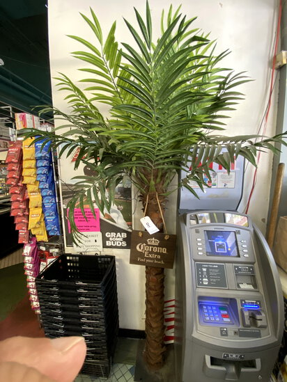 'CORONA EXTRA' ARTIFICIAL 7' PALM TREE