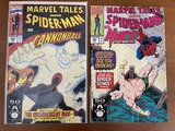 2 Issues Marvel Tales Comic #246 & #253 Marvel Comics Spiderman Cannonball Namor