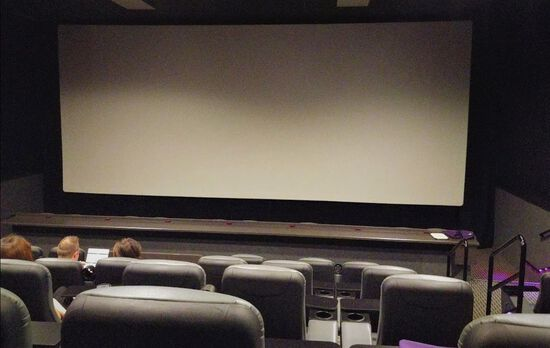 Commercial Quality Cinema Screens