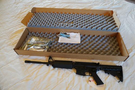 Palmetto State Armory AR-15  .223/556