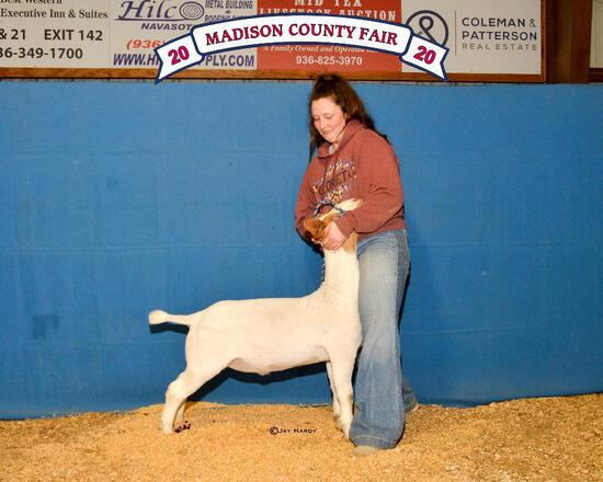 Grand Champion - Goat - Gillian Kizer - North Zulch 4-H