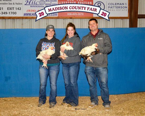 Grand Champion - Poultry - Dylan Blakley - Madisonville 4-H