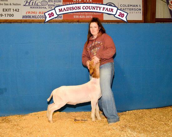 Reserve Champion - Goat - Hayden Hurst - Lamb & Goat Club