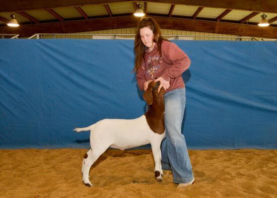 Goat - Paige McWilliams-Leggett - North Zulch 4-H