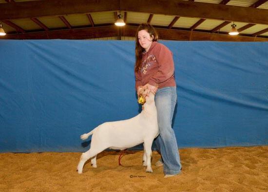 Goat - Garrett Rhodes - North Zulch 4-H