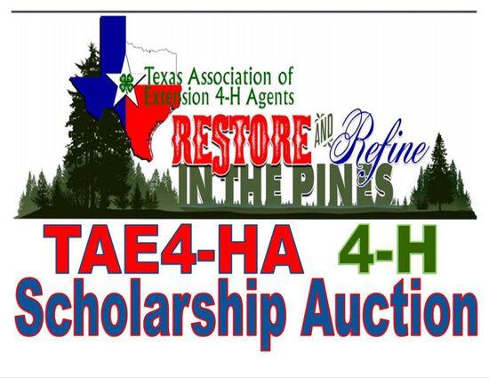 TAE4-HA 4-H Scholarship Auction