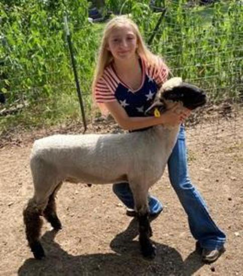 3rd Place Lamb - Kaitlynn Medcalf - FFA