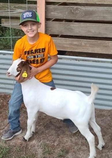 Grand Champion Goat - Hunter Rollo - 4H