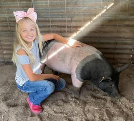 Grand Champion Swine - Summer Ogden - 4H