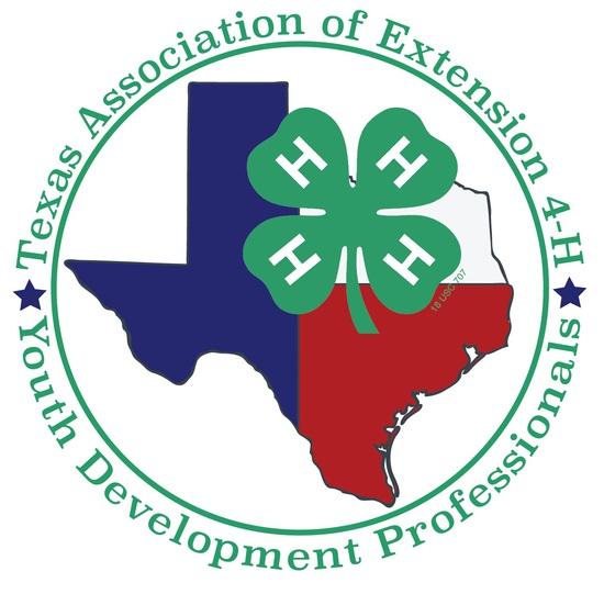 TAE4-HYDP 4-H Scholarship Auction 2021