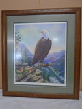Beautiful Limited Edition Numbered Eagle Print