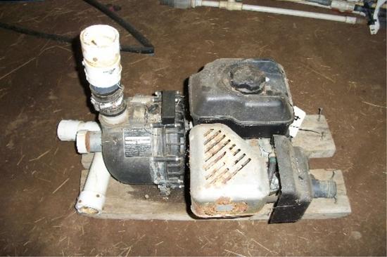 Pacer Irrigation Pump