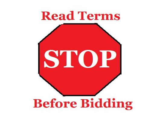 IMPORTANT: Please read before bidding!