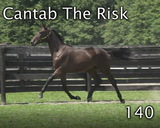 CANTAB THE RISK