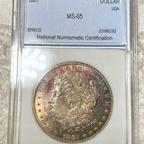 1881 Morgan Silver Dollar NNC - MS65