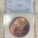 1880-S Morgan Silver Dollar NNC - MS65