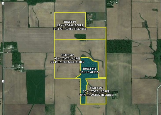 Tract 3. 32.5 +/- total acres of Timber