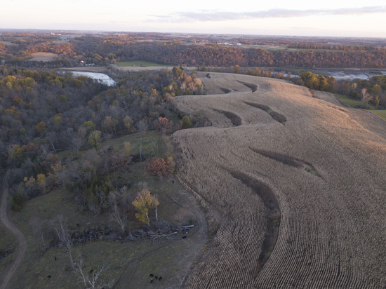 Clayton County, IA 465.5 +/- Acre Land Auction