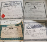 Collection Of Homing Pigeon Diplomas Early 20th Century
