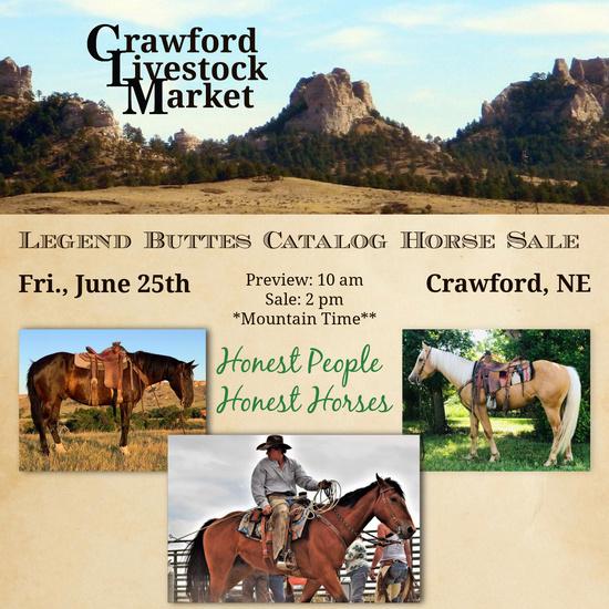 2021 Legend Buttes Catalog Horse Sale