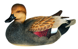 Gadwall Decoy